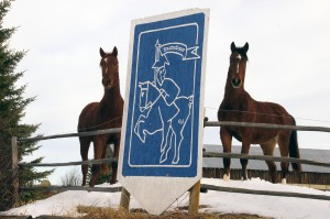 Two Touchstone horses with the sign that greets visitors upon arrival to Touchstone Farm.